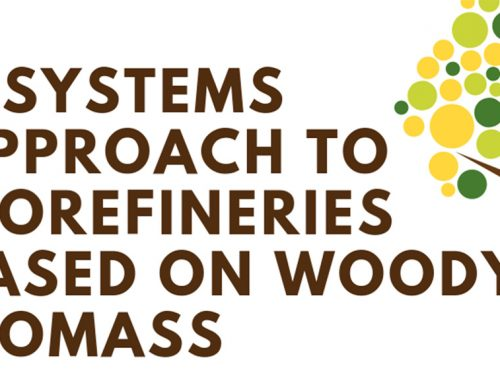 Expert talk on systemic approach of processes based on forest biomass